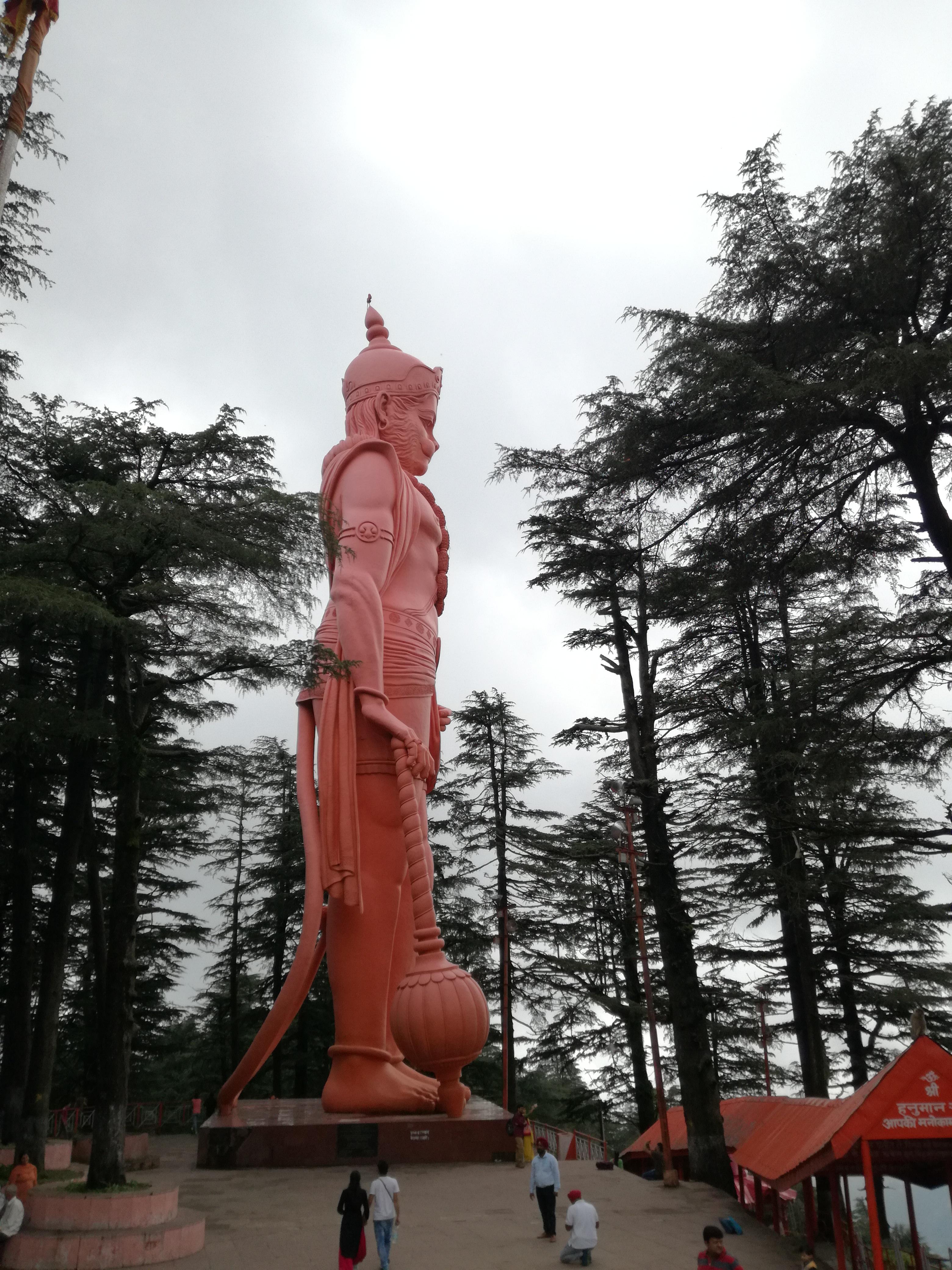 naoi_india