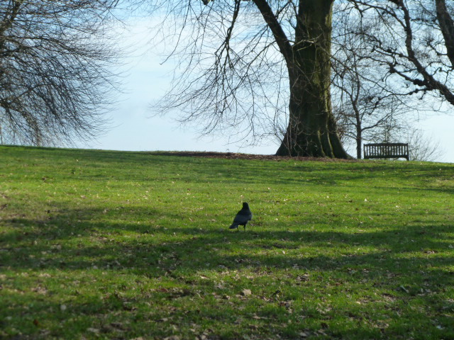 park_london