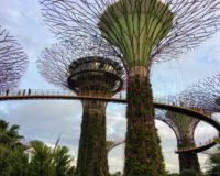 Σιγκαπούρη (μέρος 2ο): Όλα όσα δεν πρέπει να χάσετε!