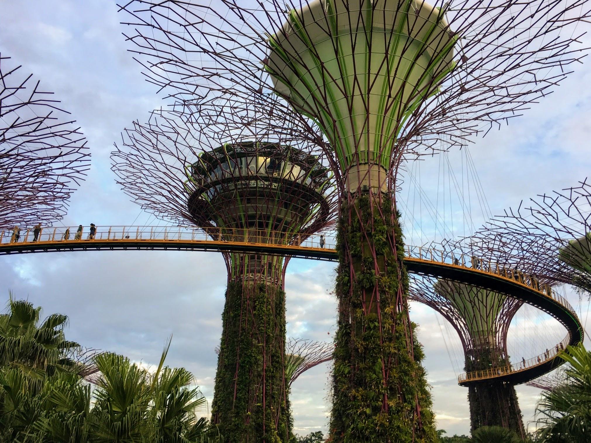 gardens_singapore