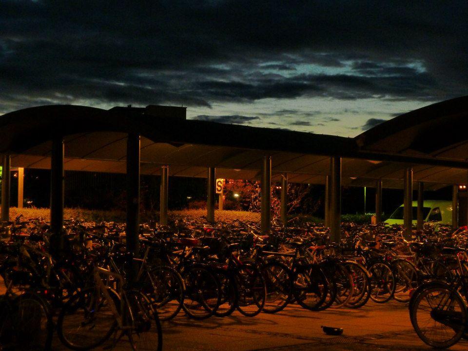 denmark_bikes