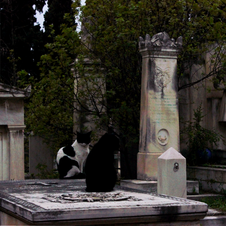 First_cemetery_4